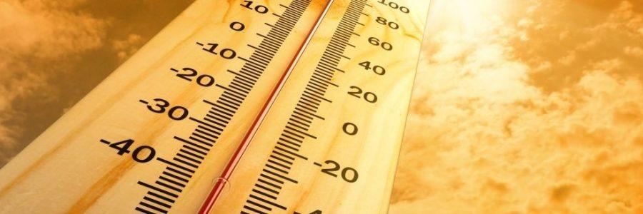 Изменение потребностей птицы в обменной энергии в жару